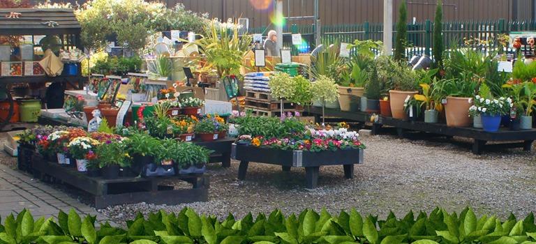 popular garden centre